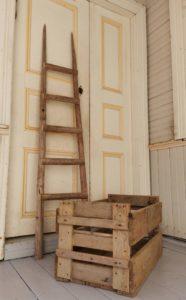 Iso laatikko vanhoista perunalaatikoista kasvatuslaatikoksi villiviineille